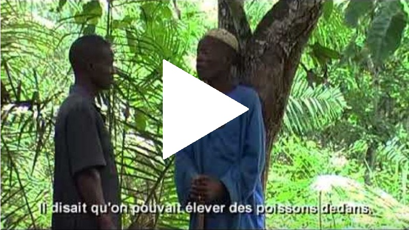 Guinee video 2a